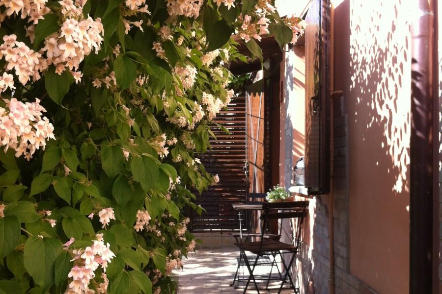 rozen-villa-marsi
