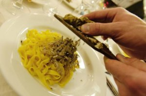 truffel workshop in le marche italie
