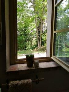 uitzicht vanuit badkamer naar de tuin