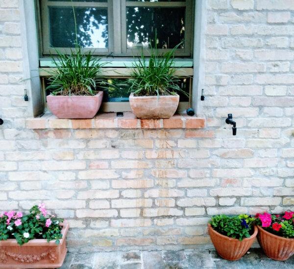 Villa marsi raam keuken met potten graslook