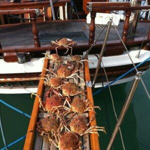 barca_fano_villamarsi